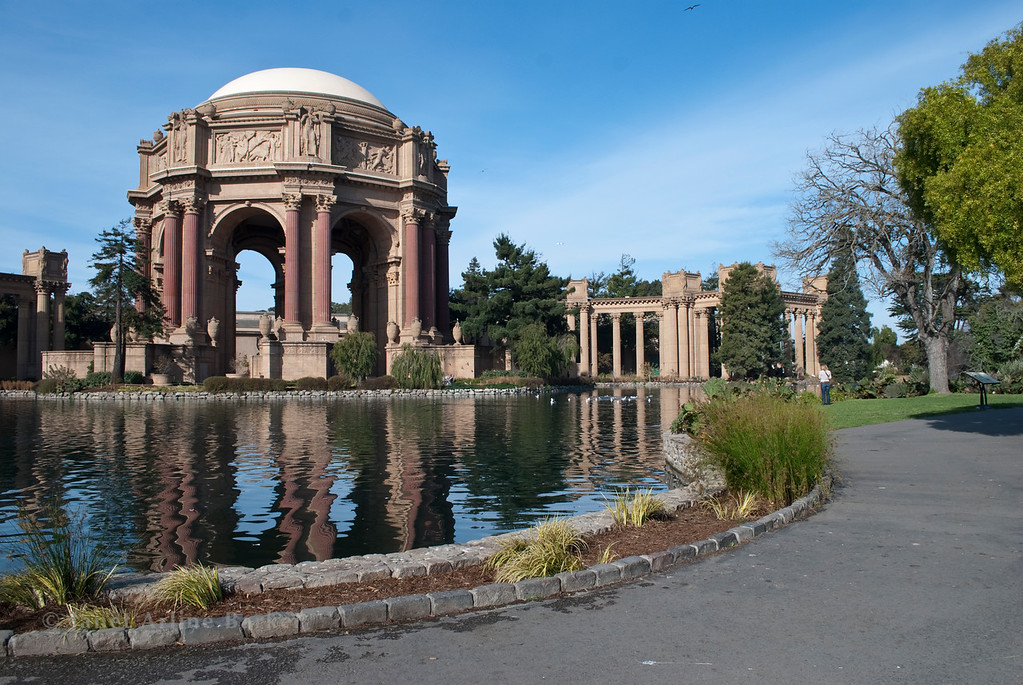 DSC_5995-SF-PALACE OF FINE ARTS