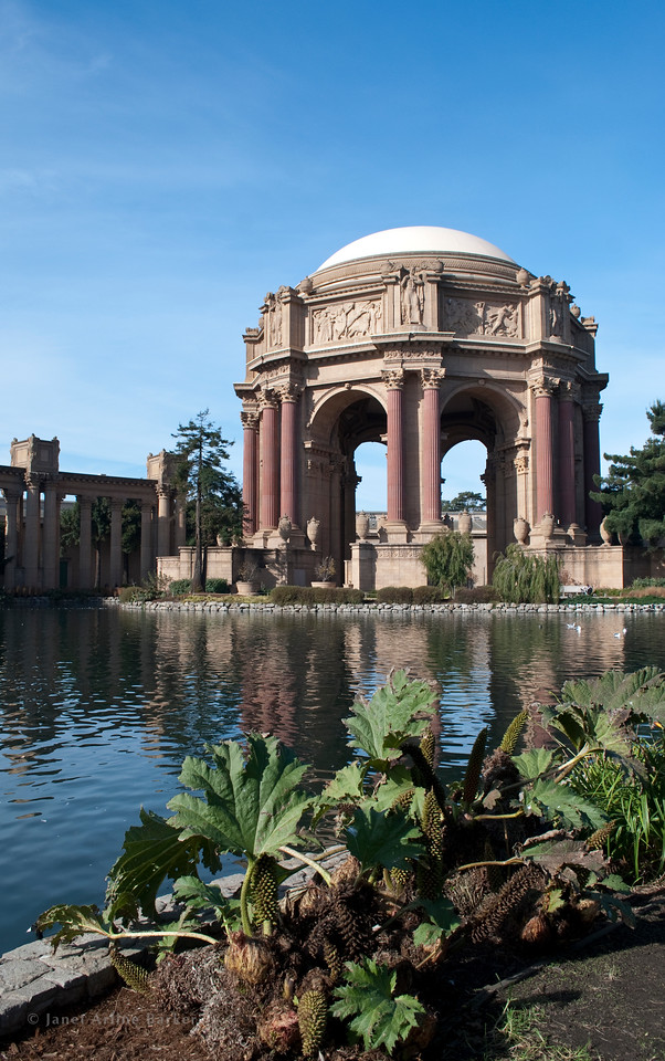DSC_6000-SF-PALACE OF FINE ARTS