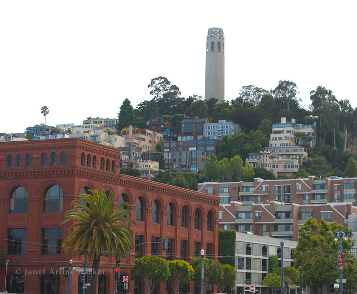 DSC_7944-COIT TOWER