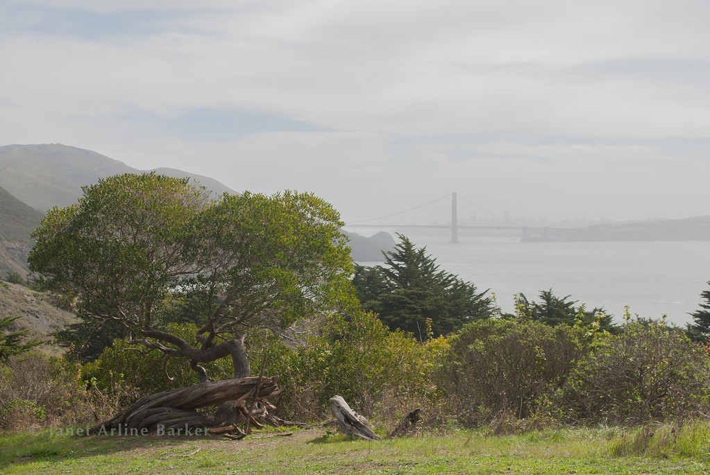 SF views from Marin Headlands-0001-140314