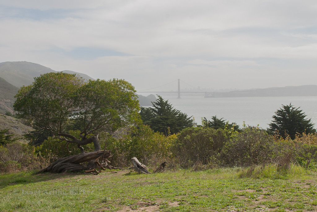 SF views from Marin Headlands-0002-140314