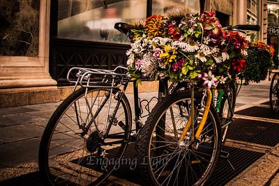 Flower Power - Manhattan Style