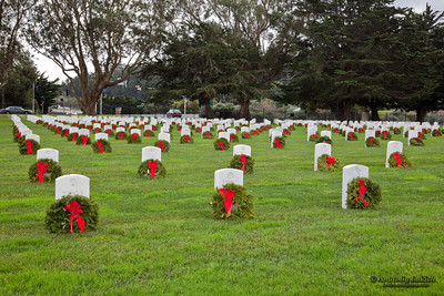 The Golden Gate National Cemetery after the wreath-laying event on December 21, 2010.   Wreaths Across America, a nonprofit organization, donated and placed wreaths in 2010 all around the USA to remember the fallen, honor those who serve, and teach children the value of freedom .