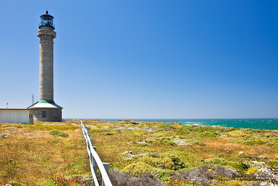 Point Arena Lighthouse. Erected in 1870, destroyed by the 1906 earthquake, and rebuilt the following year, it was the first lighthouse to be made of steel and concrete.  The Point Arena Lighthouse Tower is 115 ft. high.