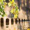 RiverHeath Reflection in Fall