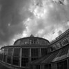 Crumpling House.<br /> Greenhouse in the Botanical Gardens, Copenhagen.