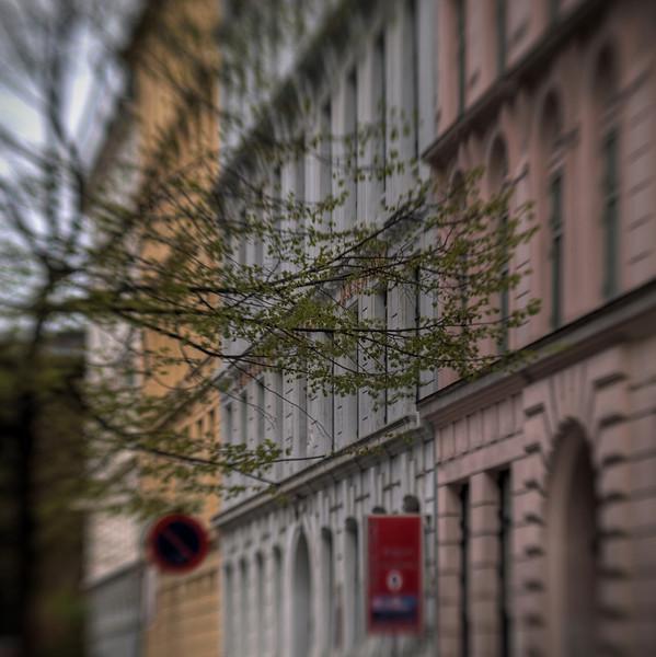 Spring Embrace.<br /> Herluf Trollesgade, København, Danmark.