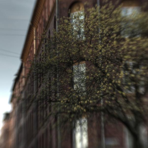 Spring Corner.<br /> Hjørnet af Livjøgergade og Willemoesgade, København, Danmark.