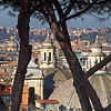 Any Dome.<br /> View from Villa Borghese.