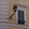 Aedes.<br /> Latin for mosquito ?<br /> Classic Rome corner.