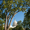 washington_capital4-4839