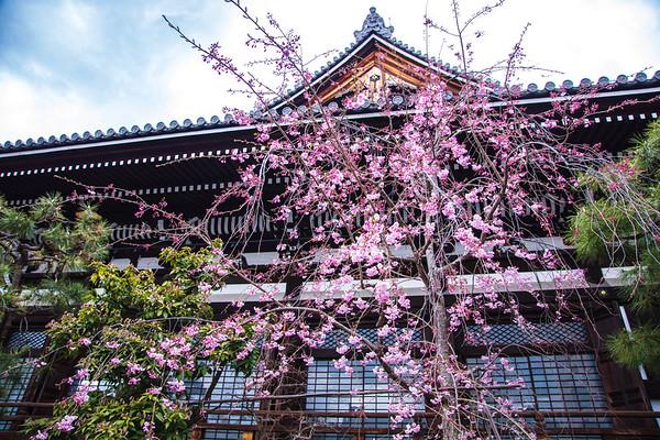 Honnō-ji Temple, Kyoto