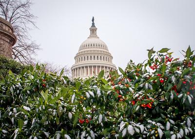 USCAP_SNOW_5X7