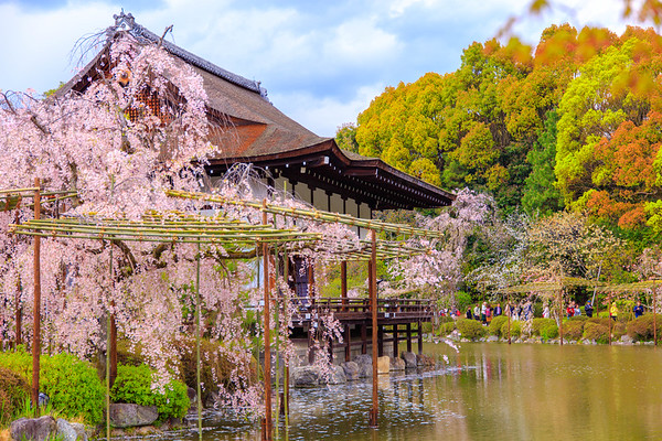 京都平安神宮東神苑