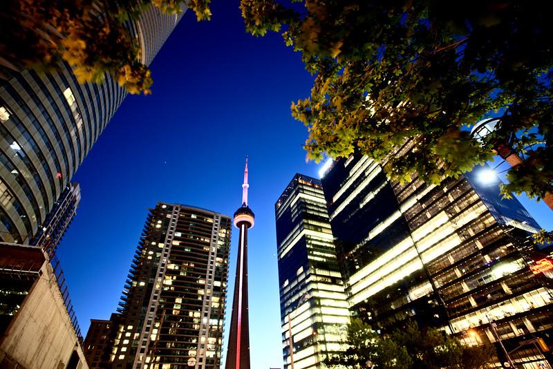 Night Photo Toronto City