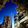 Night Photo Toronto City