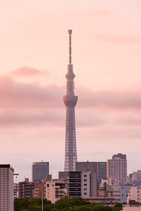 Tokyo urban skyline during golden hour