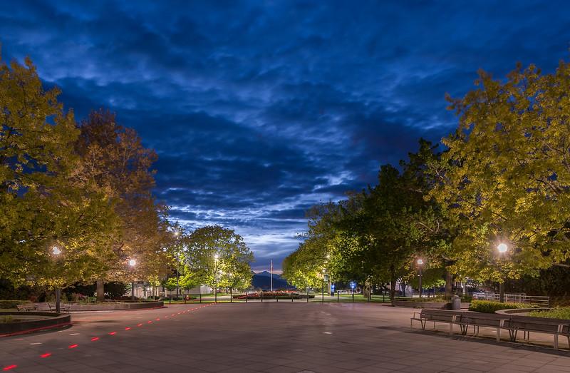 The UBC Sky