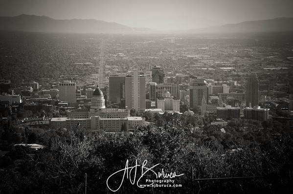 Downtown Salt Lake City From Ensign Peak  Black & White