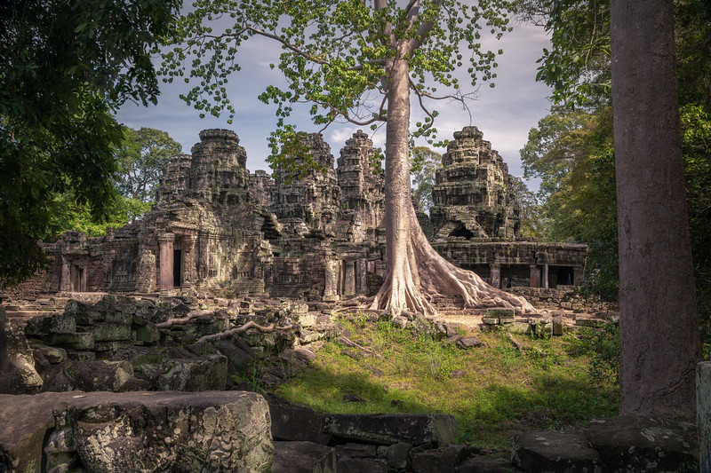 Nature Always Wins || Banteay Kdei