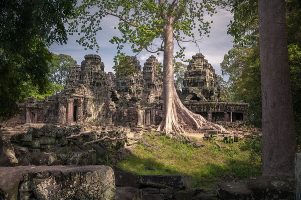 Nature Always Wins    Banteay Kdei