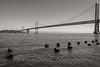 Bay Bridge BW_DSC6161