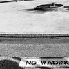 No Wading