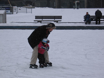 The Skating Lesson