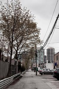 Alley Behind Bloor St