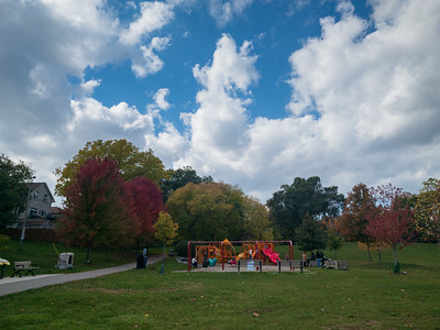 Fall Colours In Jeff Healey Park