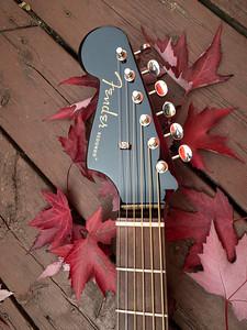 Fender Redondo Guitar