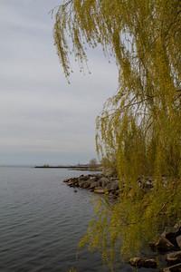 Port Credit Shoreline