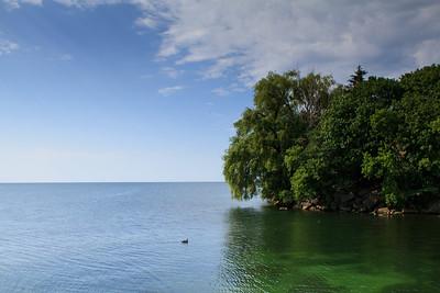 Mimico Shoreline