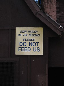 Do Not Feed Us, Riverside Zoo, Peterborough