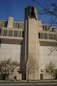 Cherry Blossoms at the Robarts Library