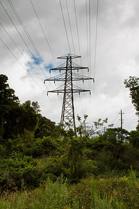 Power Lines In Tom Riley Park
