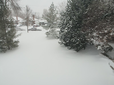 Snowstorm In East York