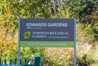 A Fall Afternoon In Edwards Gardens