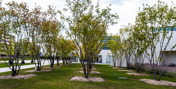The Aga Khan Museum