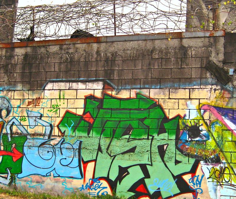 Canvas Walls
