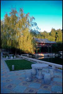 Chinese Garden and Lake, Early Morning  Aman Resort at Summer Palace, Beijing