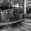 Central Park, Fall 2008