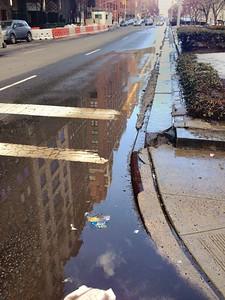 Reflections - Park Avenue
