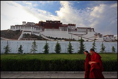 Lama walking by the Potala Palace