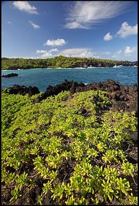 Black sand beach  Waianapanapa State Park, Maui, Hawaii
