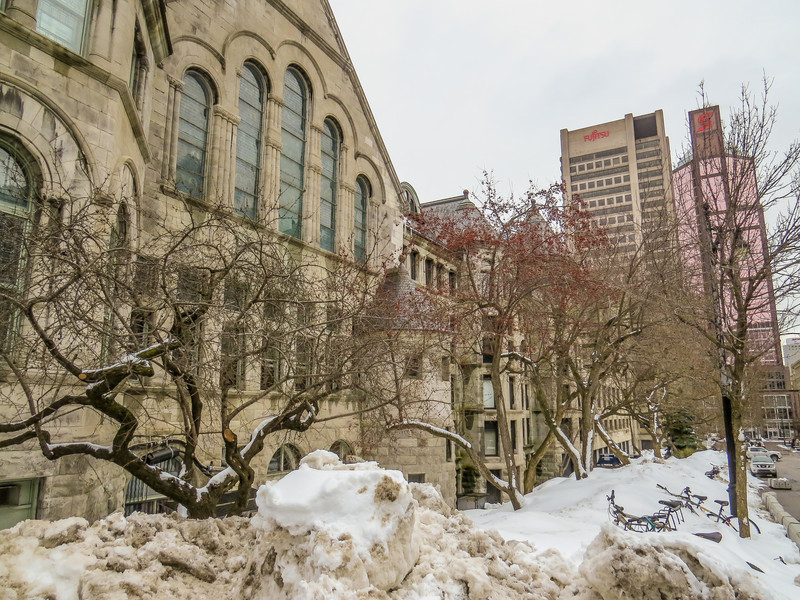 McGill University, Montreal Canada
