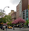 NYC, 39th Steet, 4/2010
