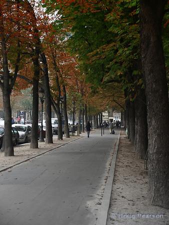 Street scene in Paris 1