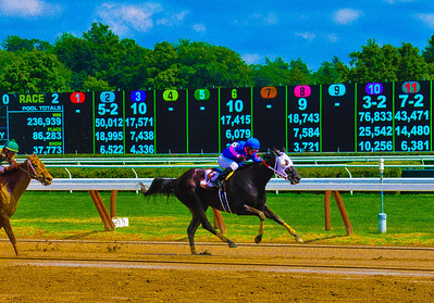 """""""What Are The Odds?"""" Saratoga Race Course, Saratoga Springs, NY."""