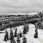 Snowy Seattle!!<br /> When Seattle has enough snow, i head out for taking some shots to capture snowy Seattle.